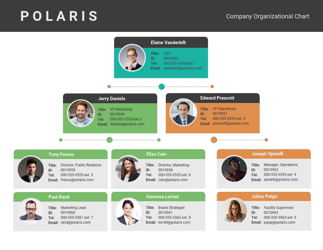 modelo grafico organizacional
