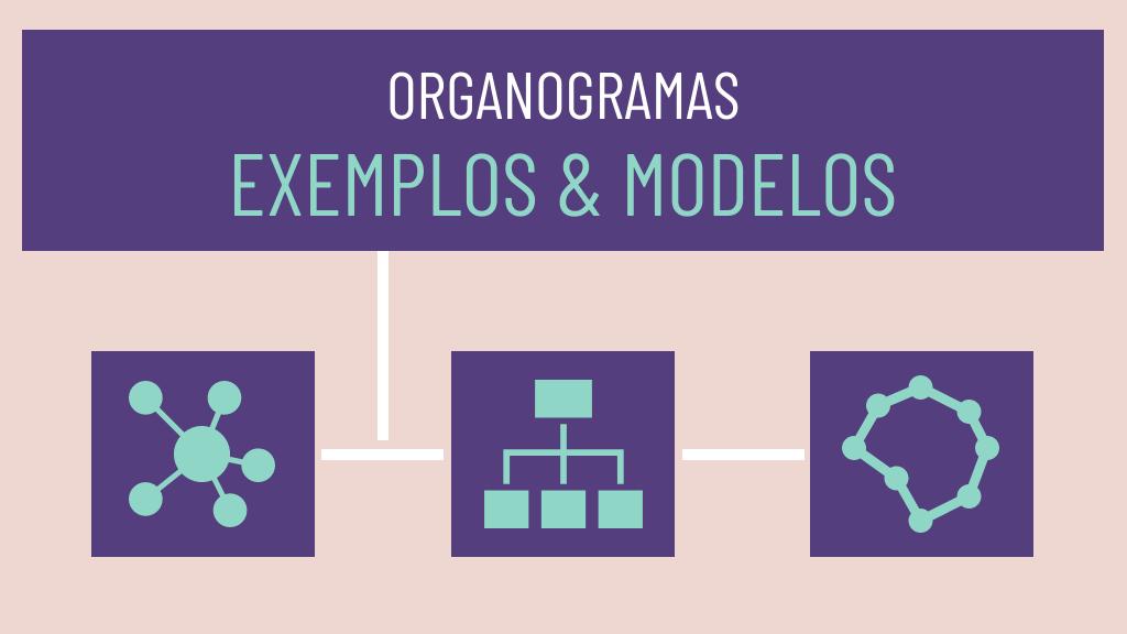 organogramas_exemplos_e_modelos